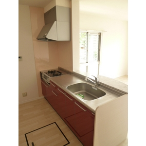 ESPERANZA・AN B棟 101号室のキッチン