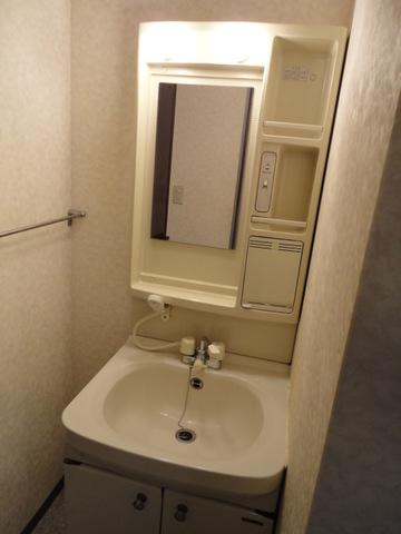 SUE STATIONハイツ 105号室の洗面所