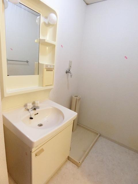 セジュール新原 203号室の洗面所