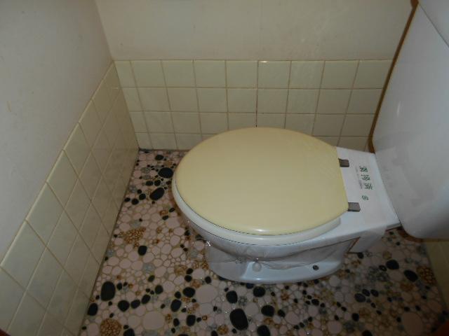 柳沼ハイツ 5号室のトイレ
