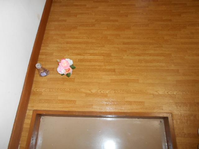 柳沼ハイツ 7号室のエントランス