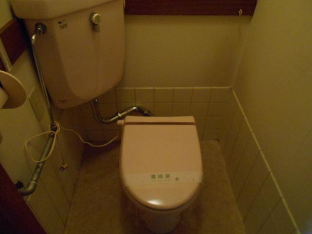 柳沼ハイツ 7号室のトイレ
