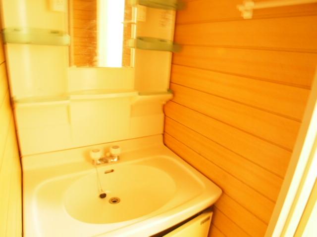 ペアシティ久喜参番館 411号室の洗面所