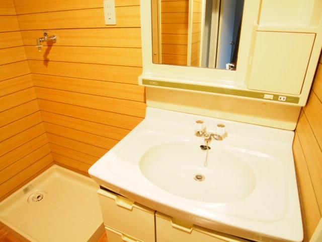 ペアシティ久喜参番館 507号室の洗面所