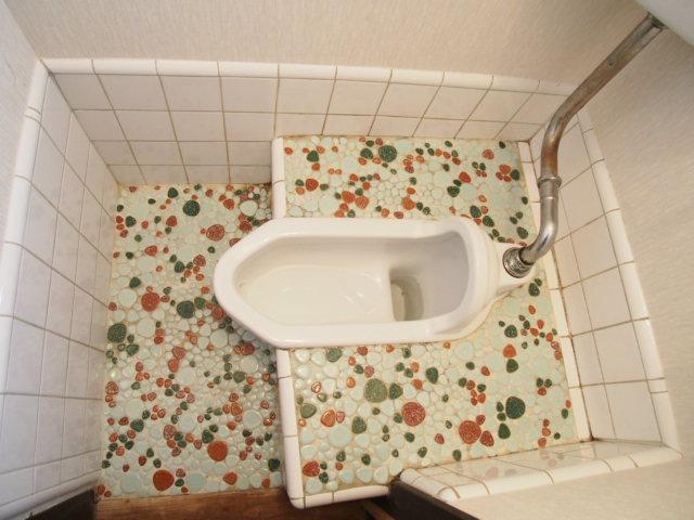 玉喜ハウス 102号室のトイレ