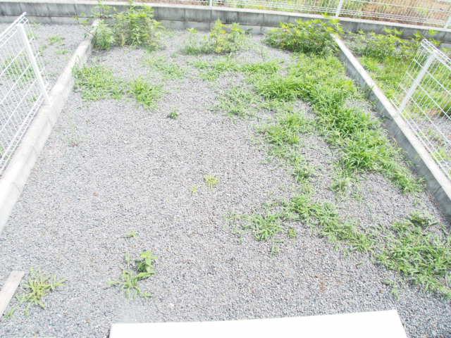 Demeureの庭