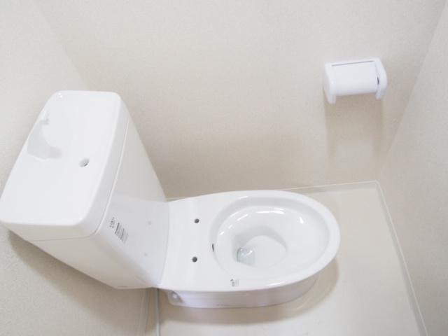 ヒルズマンション 202号室のトイレ