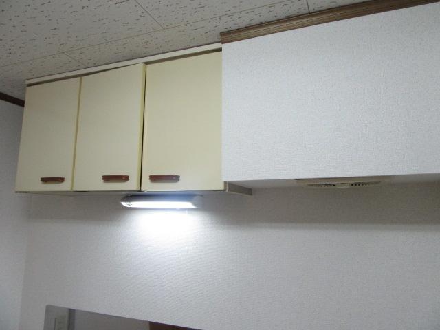 ドリームライフさつき 102号室のキッチン