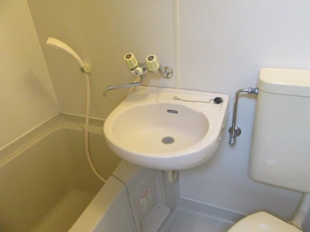 グリーンヒル 405号室の洗面所