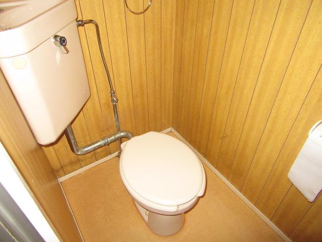 ビーフルミサキハイツB 201号室のトイレ