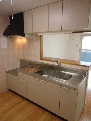 パレス・オーシャンビュー 205号室のキッチン