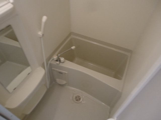 パレス・オーシャンビュー 205号室の風呂