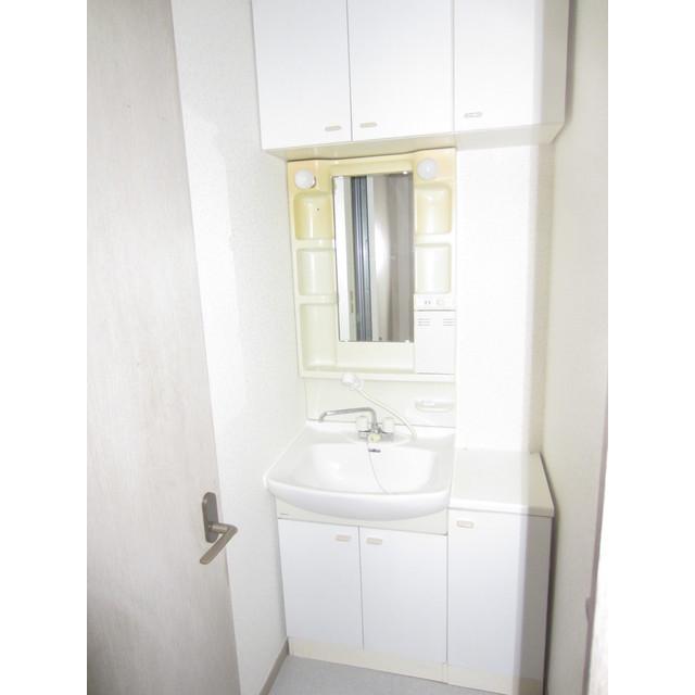 ヴィラージュドゥエス・ボン 102号室の洗面所