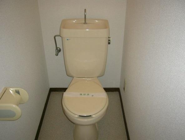 スカイハイツB棟 102号室のトイレ