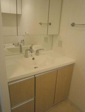 パークキューブ愛宕山タワー 1605号室の洗面所