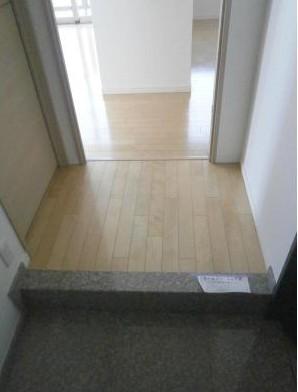 パークキューブ愛宕山タワー 1605号室の玄関