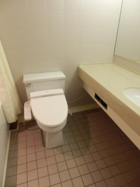 祐天寺アイル 201号室のトイレ