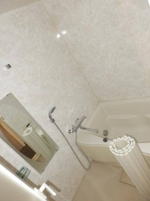 カーザ・エルミタッジオ 303号室の風呂
