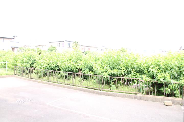 シティハイツ田所 01020号室の景色