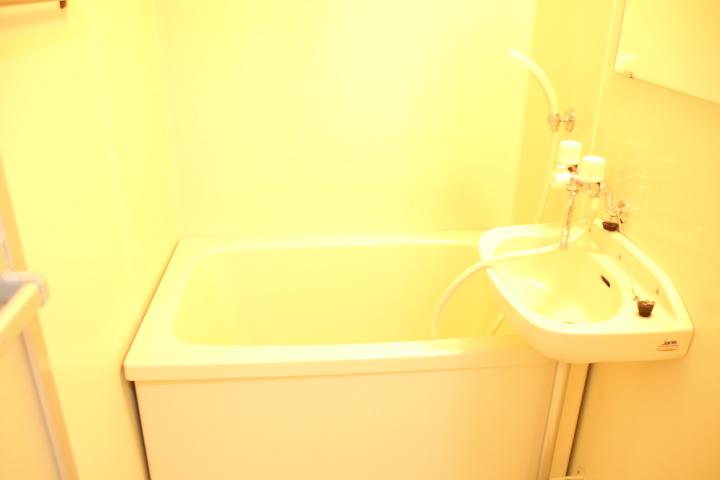 シティハイツ田所 01020号室の風呂