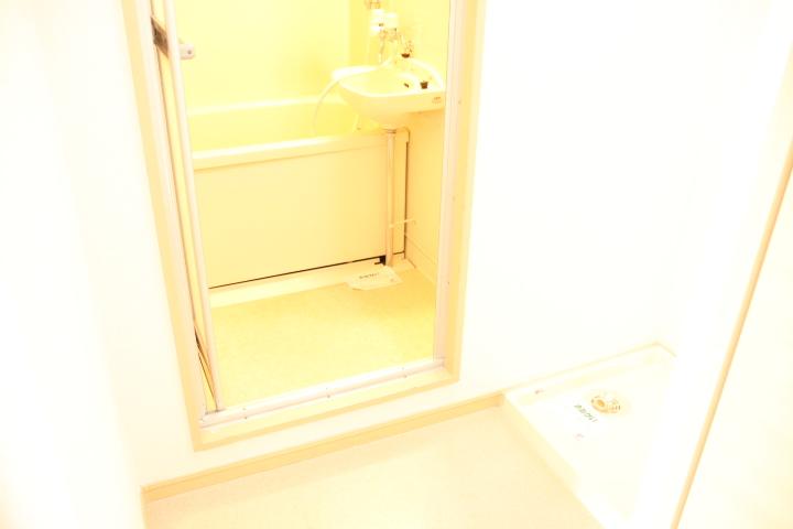 シティハイツ田所 01020号室の洗面所