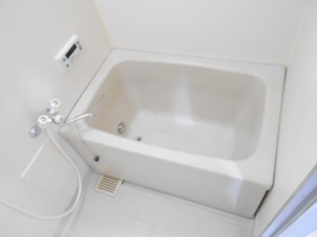 エレガンスパーク立沼橋 01010号室の風呂