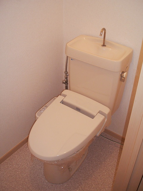 エルディムコスモス 02020号室のトイレ
