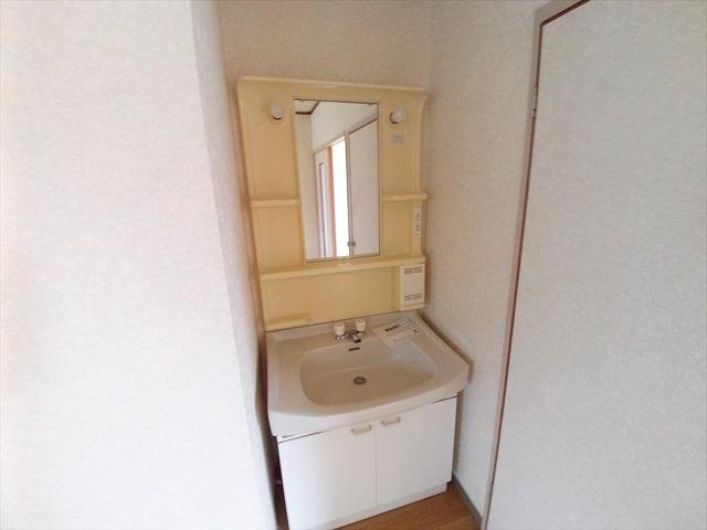 グリーンリバー泉台A 02020号室の洗面所