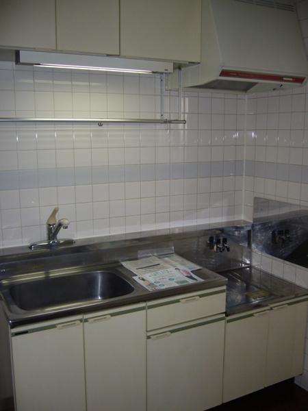 グリーンリバー泉台B 01020号室のキッチン