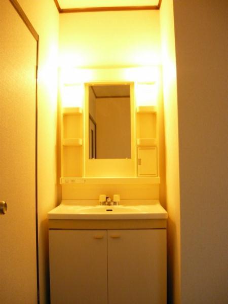 泉台ハイツ 02010号室の洗面所