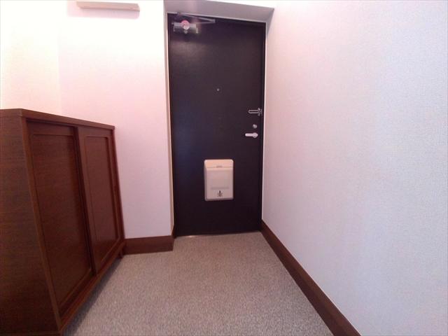 ニューエルディム伊藤A 03010号室の玄関