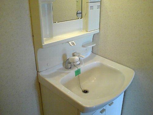 クレストヴィラヒヨシ 02030号室の洗面所