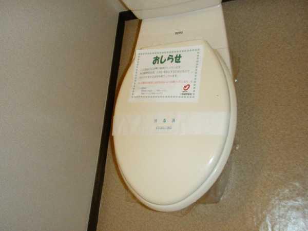 メゾンドレスポワール 01010号室のトイレ