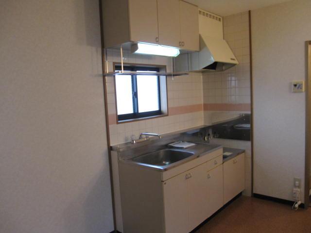 ニューシティー大沢Ⅱ 02030号室のキッチン