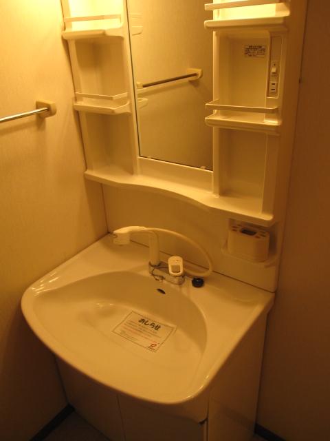 ルミエ-ル・上 01020号室の洗面所