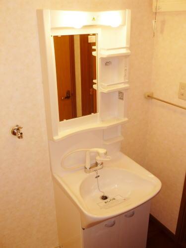 エスB 01020号室の洗面所