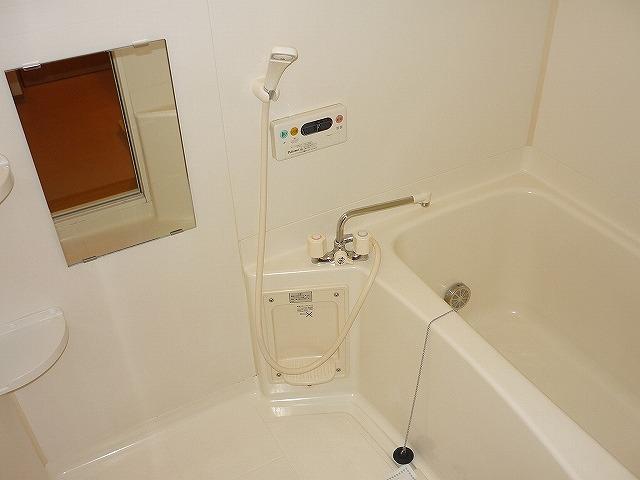 ティープラント 02030号室の風呂