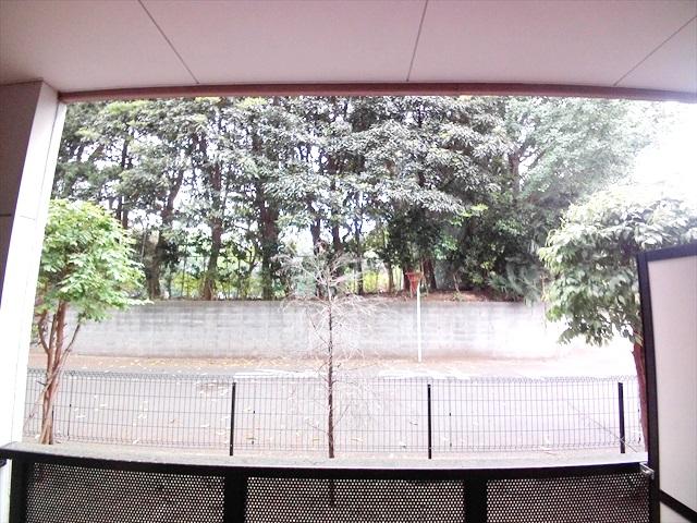 フォーチュンコート 01030号室の眺望