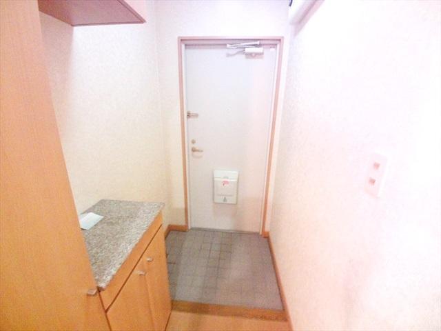 フォーチュンコート 01030号室の玄関