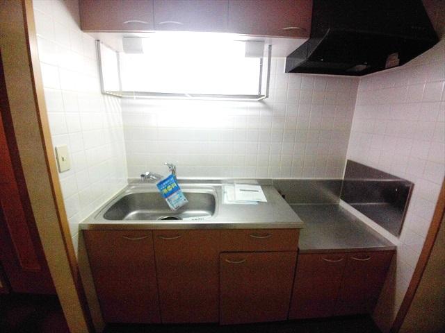フォーチュンコート 01030号室のキッチン