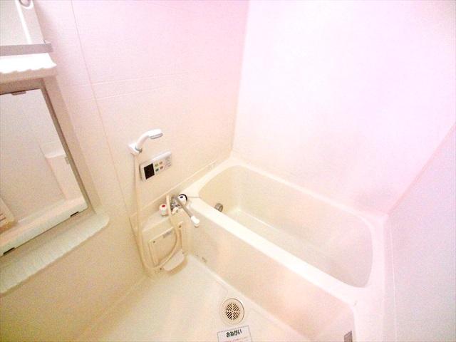 フォーチュンコート 01030号室の風呂