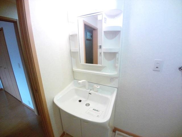 フォーチュンコート 01030号室の洗面所