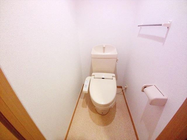 フォーチュンコート 01030号室のトイレ