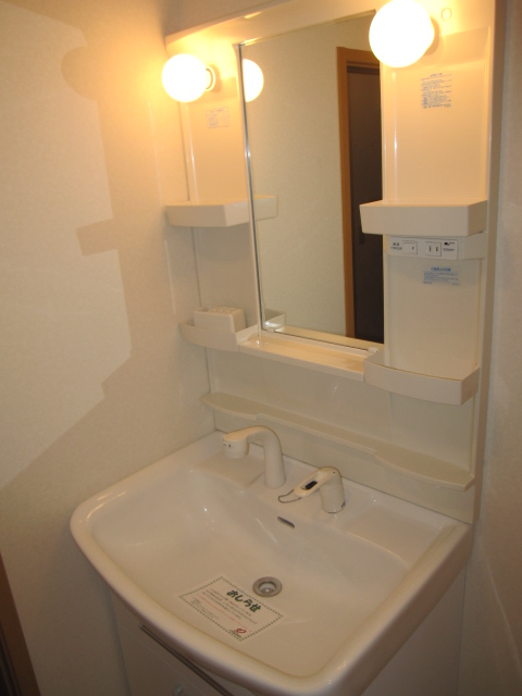 クロシェット・ボワ 03040号室の洗面所