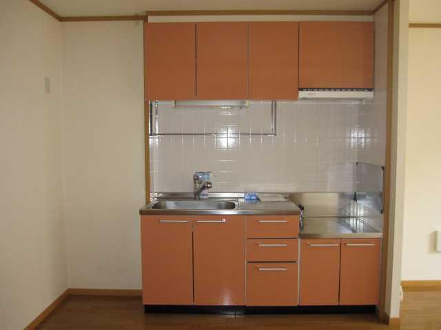アンジュ・メゾン B 01010号室のキッチン