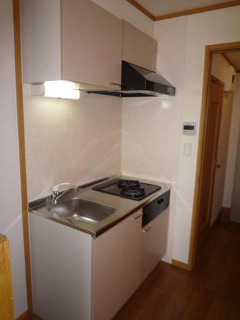 スプリングヒルズ 02060号室のキッチン