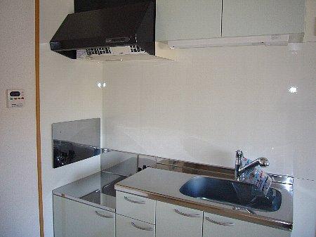 ヒルズ天神 02060号室のキッチン