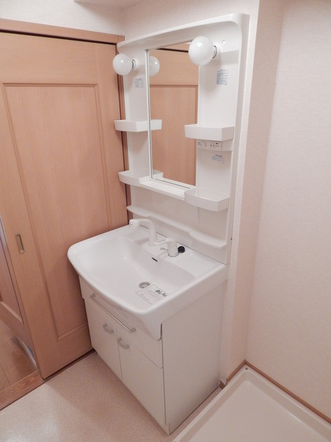 モーヴ・カミカ 02020号室の洗面所