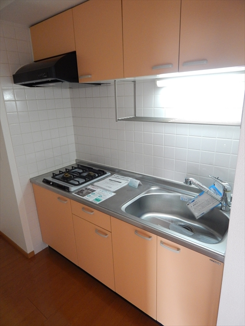ゴールドレジデンスⅡ 04020号室のキッチン