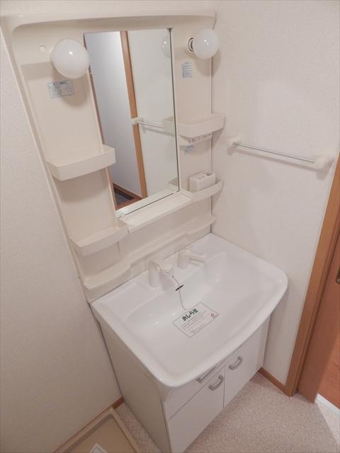 ゴールドレジデンスⅡ 04020号室の洗面所